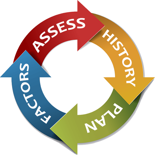 History > Plan > Factors > Assess